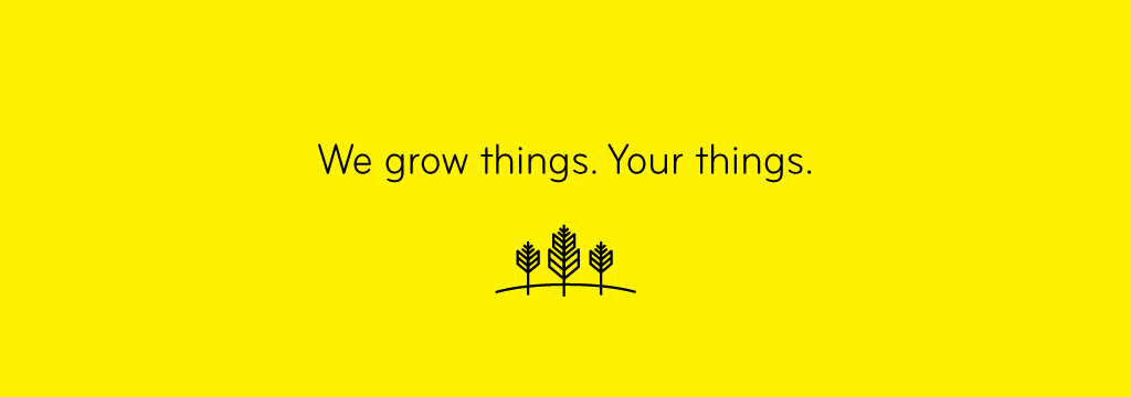 We Grow Things. Your Things. - DIY Marketing Start-up Program from Thinkfarm Interactive Inc